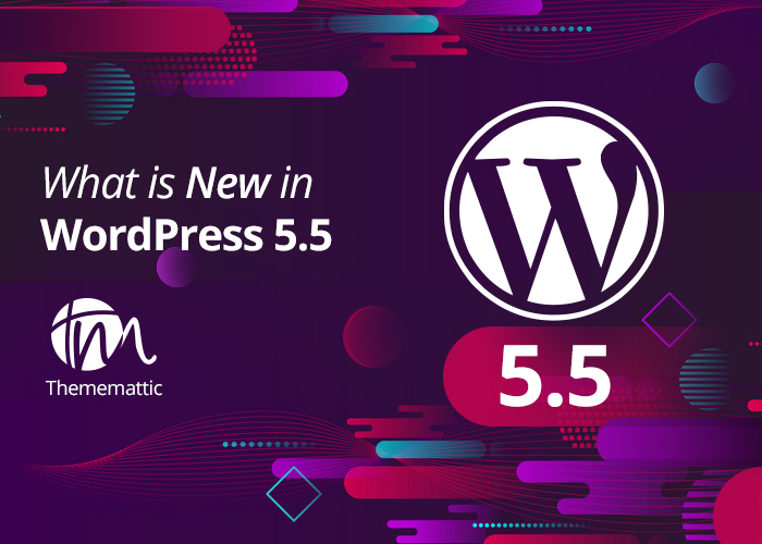 What is new in the WordPress 5.5 update?