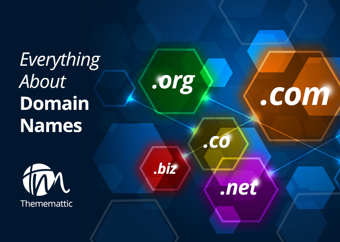 Everything About Domain Names and their functioning!