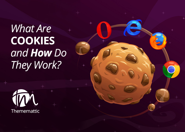 What Are Web Cookies and How to Perceive them?
